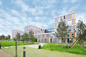 Die Gebäudekomplexe sind an der zentralen Campus-Achse ausgerichtet, die ein Wechselspiel aus rauer Bepflanzung und steinernen Platzflächen entfaltet. Mit seinen Rigolen dient das Grünband auch der Versickerung von Regenwasser.