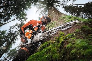 Durchzugskraft, digitale Beschleunigung und ein geringes Gewicht: Die professionelle Starkholzernte geht mit der MS 500i leicht von der Hand.<br />