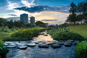 Blaue und grüne Infrastrukturen tragen dazu bei, Oberflächenwasser wieder naturnah zu bewirtschaften und Städte vor Überhitzung zu schützen. Hier der Bishan Park in Singapur: Das dort umgesetzte Programm dient der Trinkwasserversorgung und dem Hochwasserschutz.