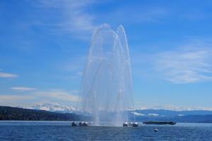 Zwölf Wasserstrahlen bilden Bögen, die sich in drei verschiedenen Etagen treffen. Die Höhen der Etagen ändern sich permanent, auch zueinander, verursacht durch die seismische Unruhe der Erdkruste unter der Stadt Zürich.