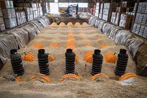 Unter der alten Salzlagerhalle werden die Rigolentunnel installiert. Trotz beengter Baustellenverhältnisse gehen die Arbeiten zügig voran. Zu sehen sind die Kontrollschächte und die Rigolentunnel.