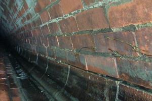 Sogar erste Wurzeln hatten sich durch die marode Bausubstanz den Weg in den Kanal gebahnt.