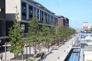 Im belgischen Hasselt – im neuen Wohn- und Einkaufskomplex Quartier Bleu – haben die verantwortlichen Stadt-planer auf das Wurzelkammersys-tem Wavin TreeTank gesetzt, um für die Stadtbäume ein gesundes Wachstum sicherzustellen.