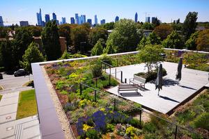 Neben der Nutzungserweiterung dienen solche städtischen Gärten außerdem als Wasserspeicher und Verdunstungsflächen.
