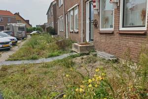 In der Vergangenheit haben sich die Straßen und Wege in De Kanis stark abgesenkt - im Verhältnis zu den auf Pfählen errichteten Häusern hat sich der Höhenunterschied immer weiter vergrößert.