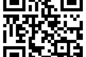 Weitere Informationen zum modularen Fassadengerüstsystem finden Interessierte in einem Video-Clip auf YouTube unter yt-ags-de.layher.com.