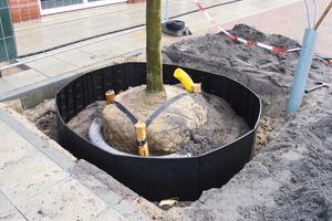 In unmittelbarer Nähe zum Ballen lenken die TRG-Platten Baumwurzeln sicher in die Tiefe.<br />
