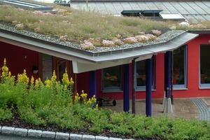 Wenn Regenwasser nicht nur genutzt werden soll, kann es durch Dachbegrünung zu 50 – 70 % verdunstet werden<br />Foto: König