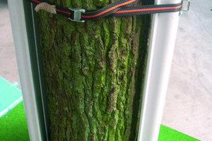 1Rundum-Schutz auf der Baustelle: Der so genannte Funke Baumschutz besteht aus Kunststoffprofilen, die mit einem Spanngurt am Baumstamm befestigt werden