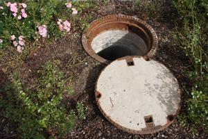 Zwischen die Rosen war der Schacht gesetzt worden – in der Hoffnung die Falte des Liners, die für ein Abflusshindernis sorgte, zu beseitigen.<br />