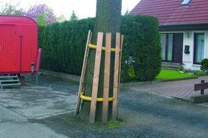 """3Ein alltägliches Bild auf einer Baustelle: Üblicherweise werden Bäume im Baustellenbereich mit einem Stammschutz aus Holzbrettern verschalt                                          <span class=""""bildunterschrift_hervorgehoben"""">Fotos: Funke Kunststoffe GmbH</span>"""